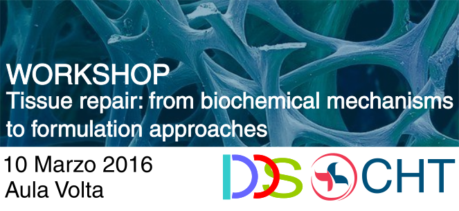 Workshop Tissue repair: from biochemical mechanisms to formulation approaches